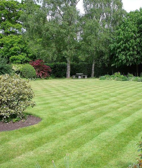 Culverhouse Gardens